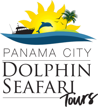Panama City Dolphin Safari Tours Logo. Horizontal with black letters, sun, water, and dolphin