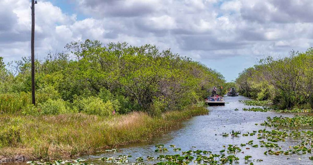 Photo of airboats in the everglades of Florida