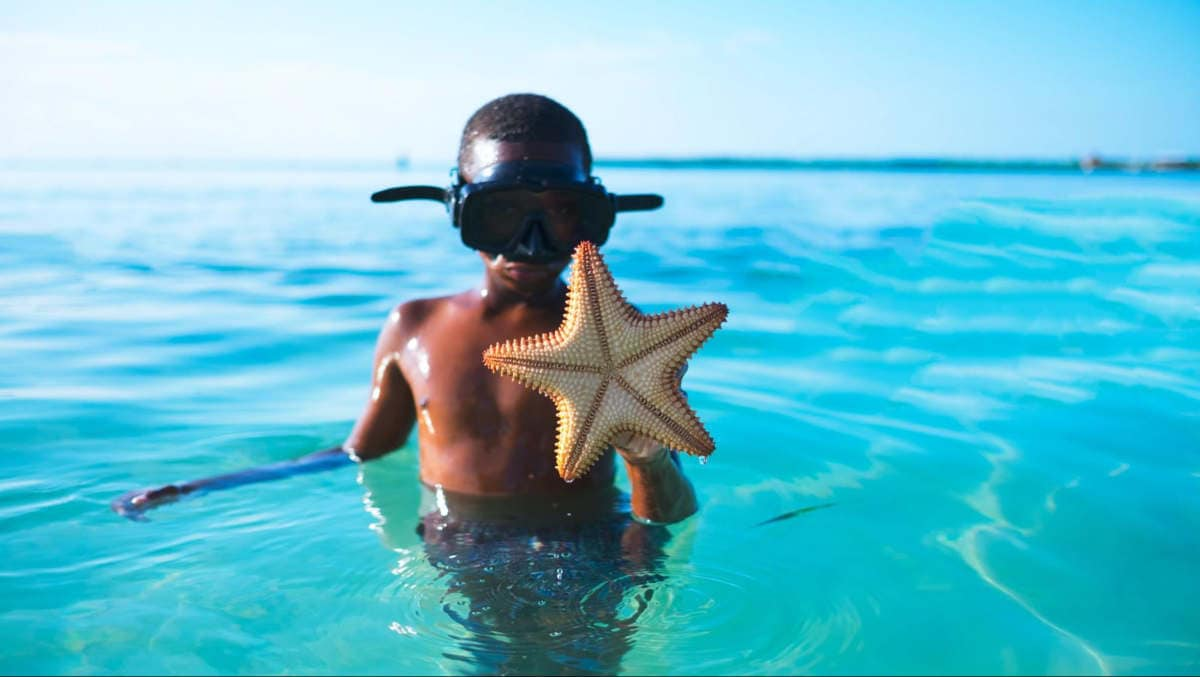 Tween boy with a snorkel mask in shallow water. He's holding up a starfish he found.
